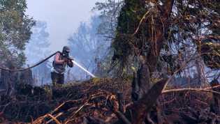 Mei 2019, BPBD Bengkalis Tangani 20 Kebakaran Lahan