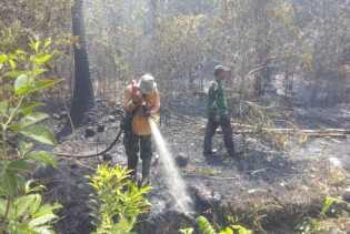 Jalan Mbah Dukun di Desa Jangkang Kecamatan Bantan Ikut Terbakar