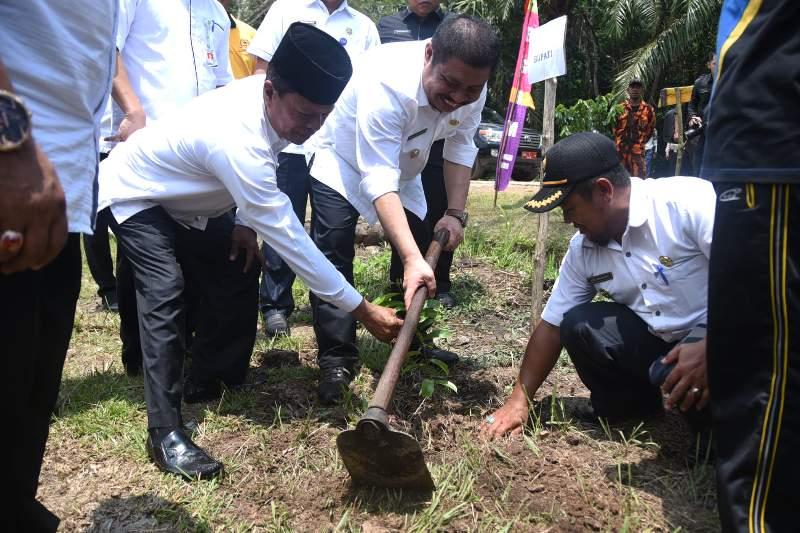 Bupati Amril Mukminin Tanam Pohon Sirsak ke 1.001 di Desa Tanjung Belit Siak Kecil