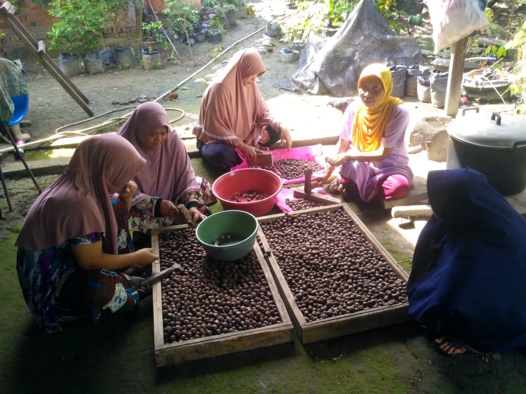 Dewi dan keluarga saat mengloah buah biji getah